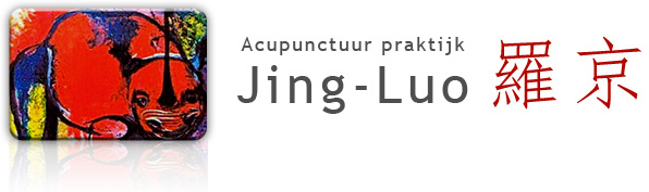 logo van acupunctuur praktijk Jing Luo te Zaandam